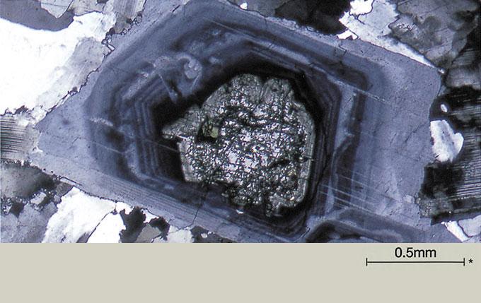 UIS2 Optics Provide Outstanding Expandability