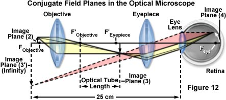 Microscope Optical Components - Introduction